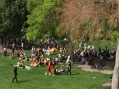 Salt Lake City. Random communal gatherings featuring drum circles and a woman wearing a snake in Salt Lake City.