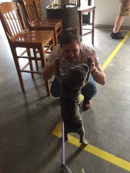 Breweries and dances with puppies.